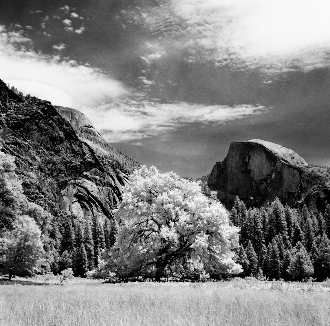Charlie Sin Photography | Infrared | Yosemite 02
