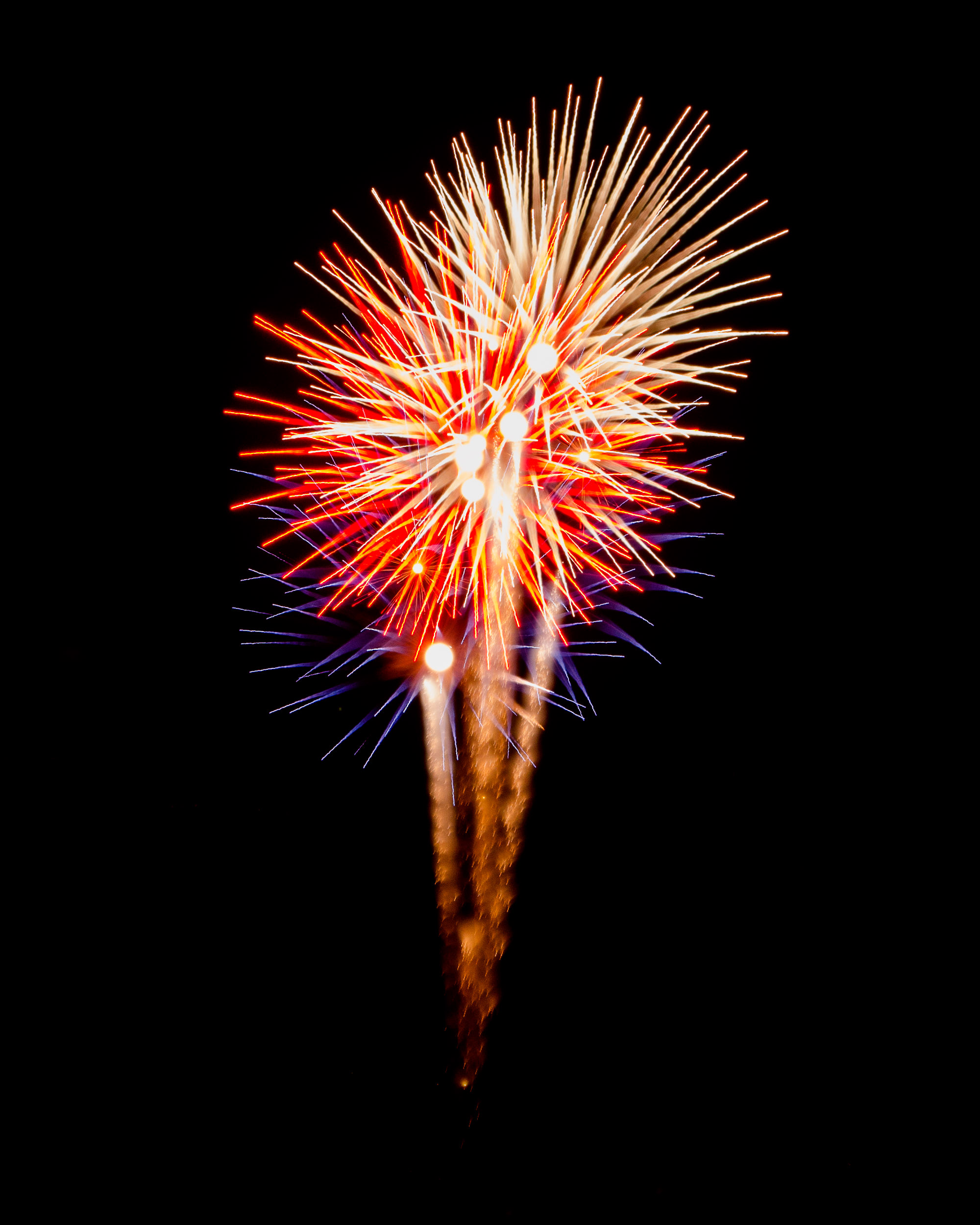 Firework Photo, Night Flower 40, WIRED Magazine
