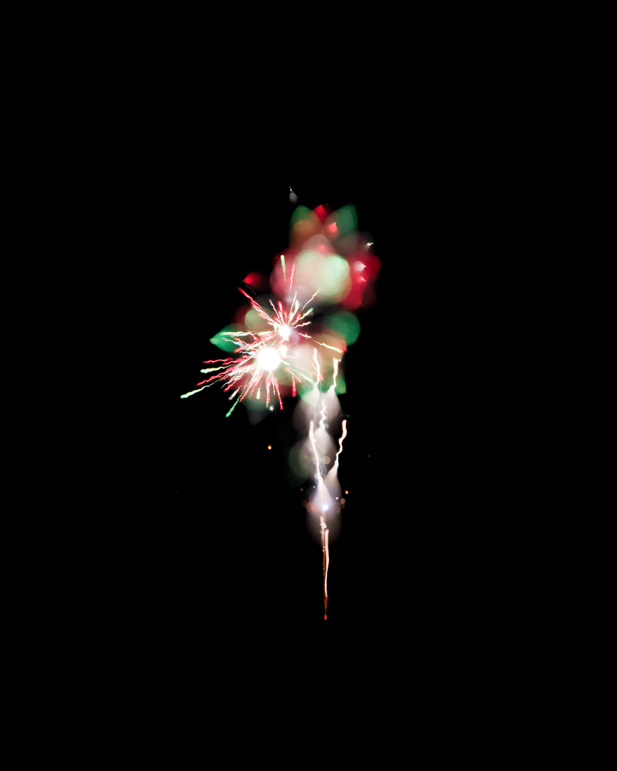 Firework Photo, Night Flower 27, WIRED Magazine