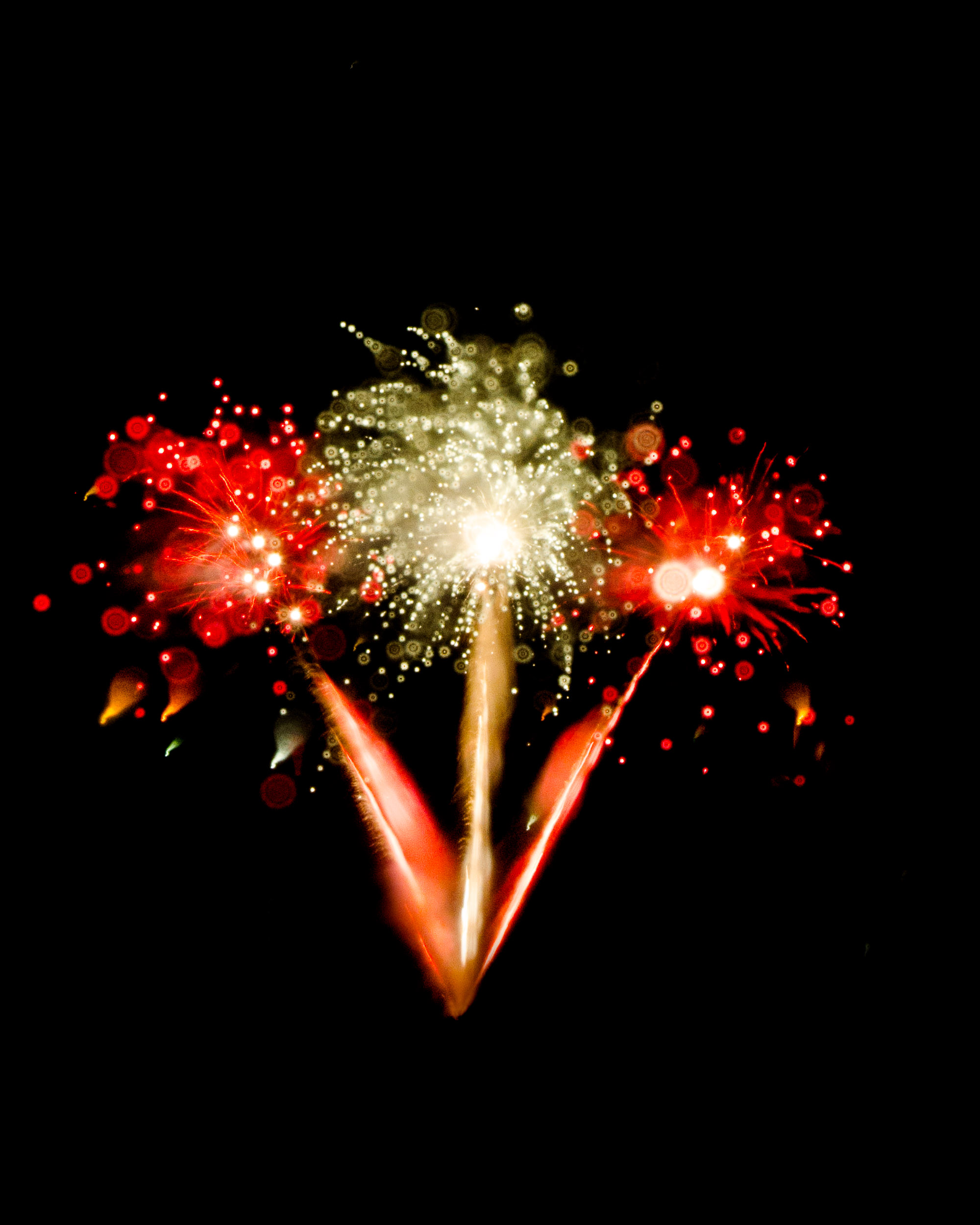 Firework Photo, Night Flower 36, WIRED Magazine