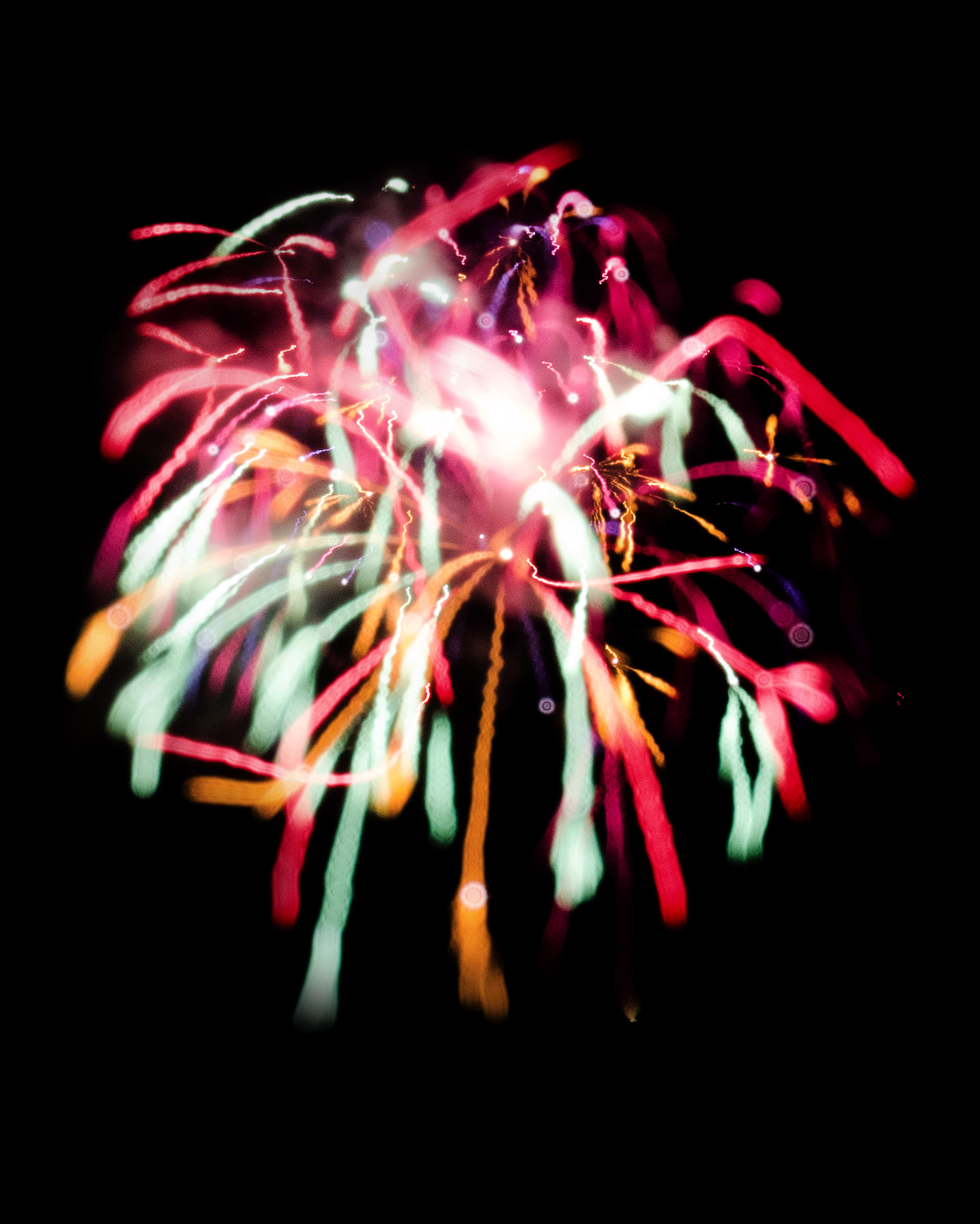 Firework Photo, Night Flower 11, WIRED Magazine